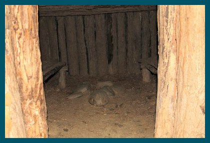 Sweat lodge interior
